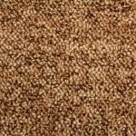 berber d.brown